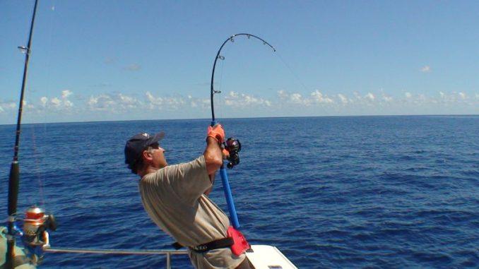 Resultado de imagen para pesca al currican