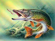 señuelos para pescar lucios