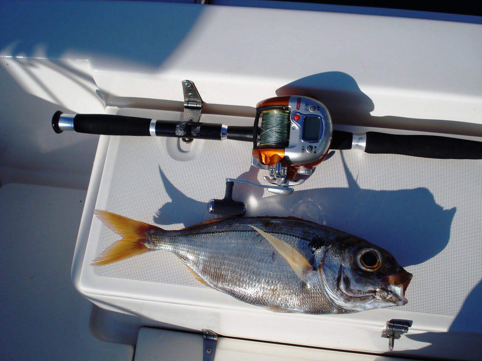 Tutorial Básico para la Pesca de Besugo desde Embarcación -
