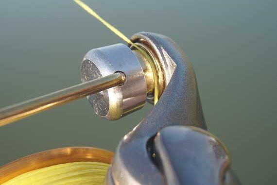 qué línea de pesca usar